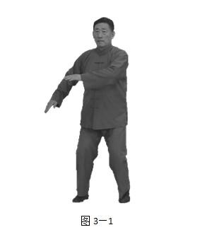 陈小旺九太极招式分解动作图示