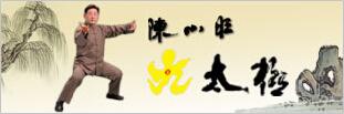 Nine-posture T'ai Chi
